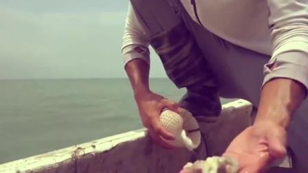小伙赶海抓到好多章鱼,还有好多这种大海螺