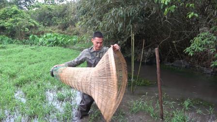 这种捕鱼装置太神奇了,不用诱饵只等鱼儿往里钻,大家有见过吗