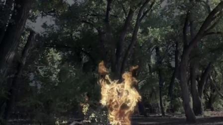 超级飓风:天显异象,一道闪电下来,击中树木起火