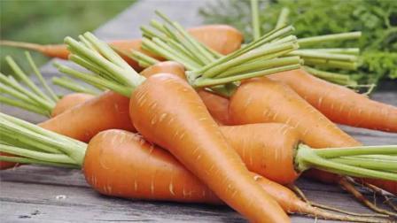 刚知道,挑选胡萝卜这么简单,牢记这3点,胡萝卜新鲜口感好