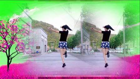 广场舞《邻家美眉》DJ版 弹跳16步