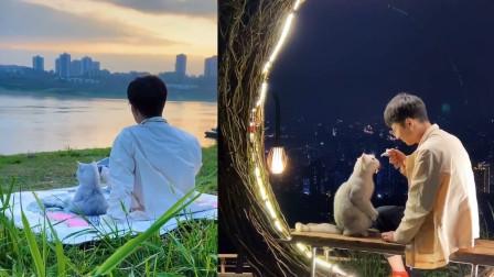 一人一猫三餐四季,当猫咪变成灵魂伴侣,网友:太治愈了!