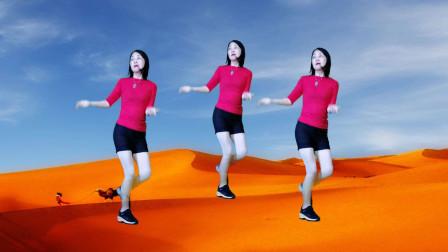 时尚流行网红舞DJ《大漠风歌》活力动感64步简单好跳