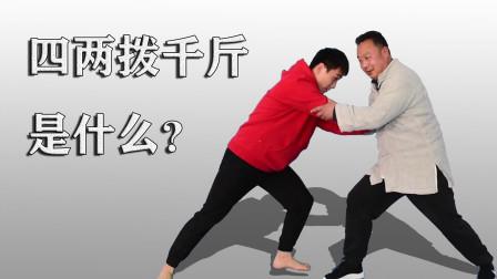 太极拳四两拨千斤,武术不以拙力胜人,传统武术灵活运胯是关键!