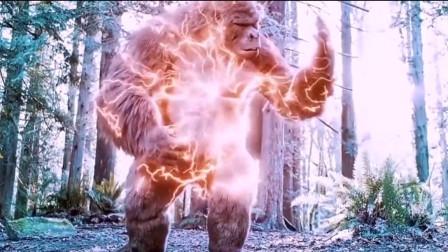 闪电侠和金刚合体进化,闪电大猩猩兽