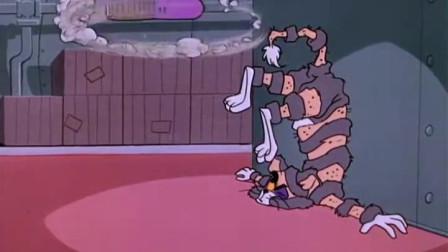 猫和老鼠大战,汤姆却成了这幅模样,看着都惨