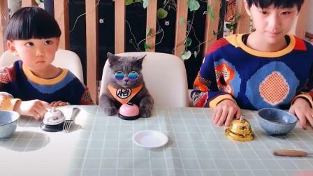 可爱猫咪戏精附体,装死看呆众人,网友:这是人吧?