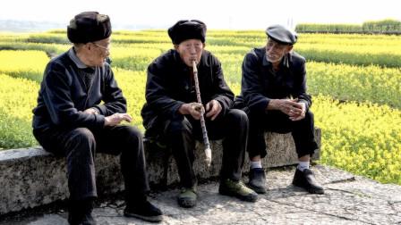 临近退休,再交养老金,到底合不合适?