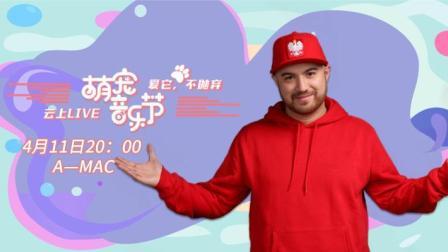 萌宠音乐节:A-mac