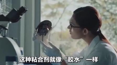 一款中国发明的黑科技,神奇胶水把沙漠粘起来变绿洲,犀照外洋知事的创作分享