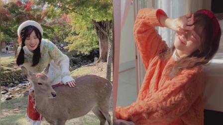 浅笑少女:奈良公园的小鹿都好乖!