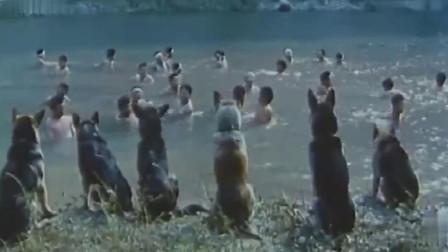 犬王:八路领一群狗,撕咬河中的日军,看着过瘾