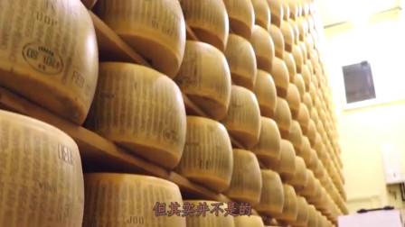 """美国美食:""""奶酪""""和""""芝士"""",到底有什么区别?看完你就懂了!"""