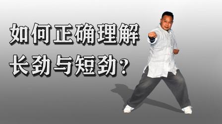 打点不打面:太极拳重要技击法则!庞恒国老师讲解武术