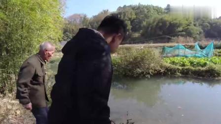 农村小伙带大爷下网抓鱼,收到沉甸甸一网,晚上有好吃点了