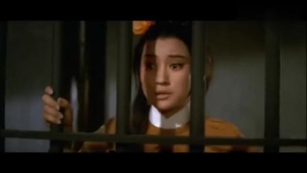香港经典武打动作大片,邵氏怀旧电影,一代人的回忆,百看不厌