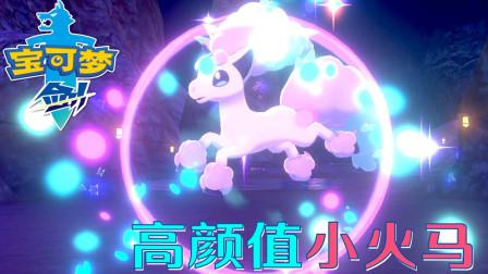 精灵宝可梦剑:第二矿山 颜值和实力并存的小火马