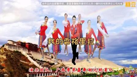 廖弟原创广场舞《我的香格里拉》简单民族舞教学