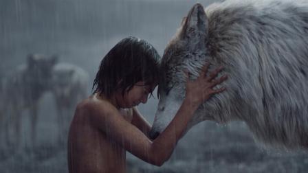 奇幻森林:迪士尼出品,狼孩大战森林之王!