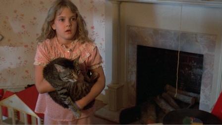 《猫眼看人》女孩被神盯上,狸猫忠心护主,竟每晚与神搏斗!