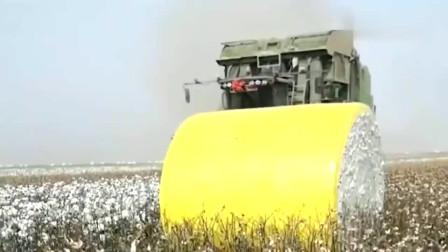 牛人发明:河南小伙发明了棉花采摘打包机,这机器的出现解放了多少棉农的双手