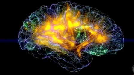 为什么人类3岁以前的记忆模糊不清甚至消失?