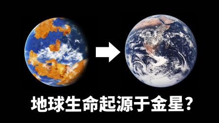 地球生命真的起源于金星吗?详解金星的前世今生!金星城市废墟以及金星殖民计划!