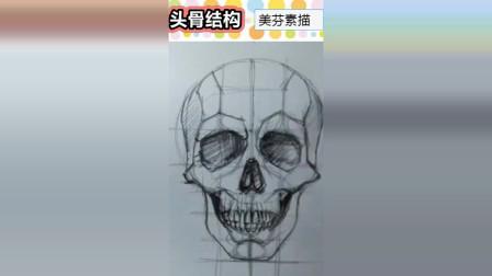 人像素描入门教程,正面头骨结构素描画法步骤解析!