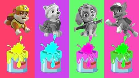 汪汪队玩具故事:好期待!灰灰跟天天会被染成什么颜色呢?