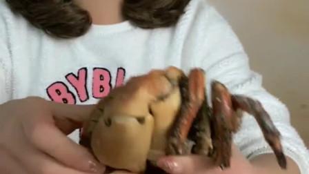 面包蟹好吃,就是太难开了