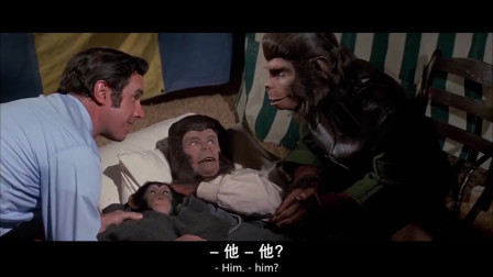 猩球人母亲生小孩,可她为体验当妈的感觉,却让黑猩猩仔叫她妈妈啊!