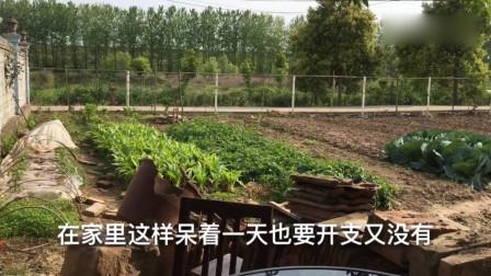 国外疫情严重,工厂关闭,失业回农村,农村老人说三道四