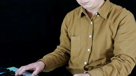 浪子的心情DJ版电子琴音乐