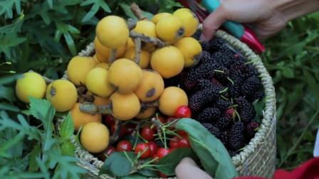 李子柒美食各种浆果的神奇组合创造出夏天的味道—美味冰激凌