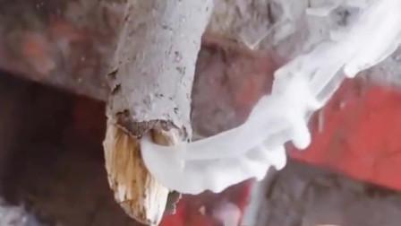 从烧火棍冒出的烟,河南小哥哥竟然用打火机一点就着?这是什么原理?有谁知道?