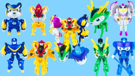猪猪侠超星萌宠变形机器人系列玩具,二合一,三合一,五合一!