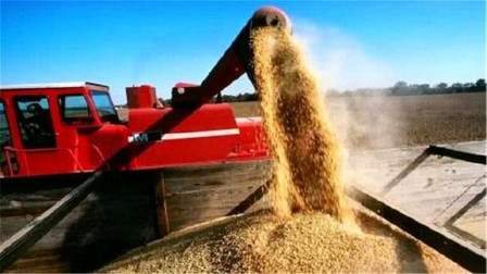 为什么美国不计成本也要出口大量粮食给中国原因很简单