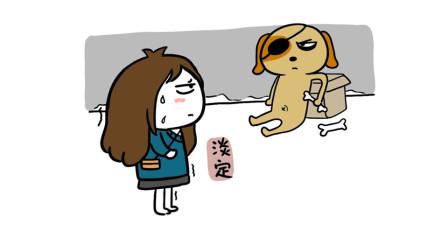 轻知识科普 | 路上遇到恶犬,该如何正确自救!