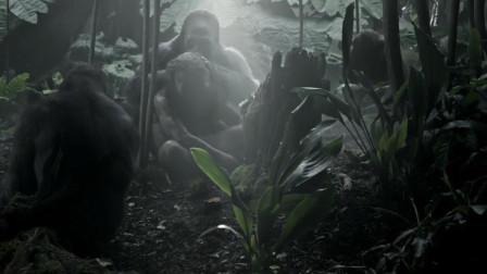 小伙从小被黑猩猩抚养成人,行为举止跟猩猩一模一样