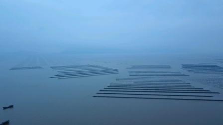 航拍台山市上川岛沙堤鱼港(4k版)2020.4.24