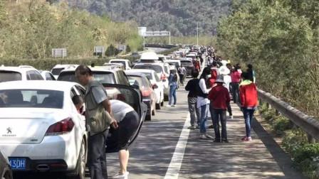 去了趟德国,终于知道国内高速堵车的原因,车主说出多少人的心声