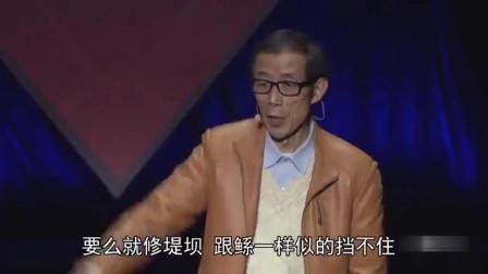 陈平:开放金融我们最大顾虑是什么?该怎么解决?