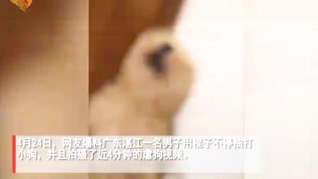 广东一男子持棍子虐狗,小狗惨叫不断,还发视频炫耀!