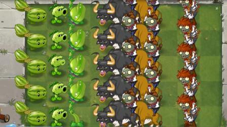 植物大战僵尸:青色食人花和西瓜抛手到达战场,僵尸全场蒙圈!