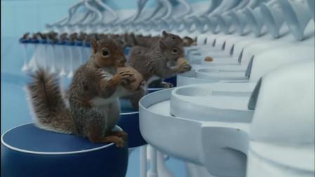 为了电影拍摄的更加真实,剧组用了29周时间,训练了40只松鼠!