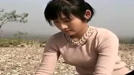 农村小媳妇太能干了,饭后就来地里晒红薯片,真不容易!