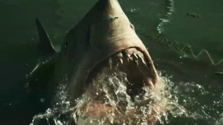 鲨口逃生:海啸过后,深海鲨鱼游进超市,在超市疯狂吃人