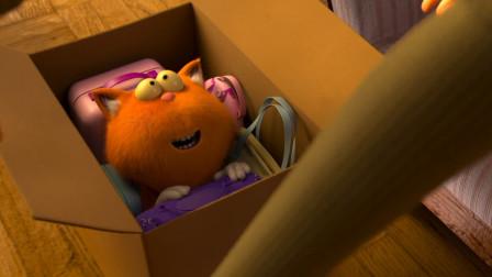 萌宠特工队:橘猫变身侦探,查明小镇盗窃案,这群小动物太有意思了