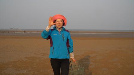 大梅赶海走了几公里,发现一个好地方,随便捡了一些海鲜回家!
