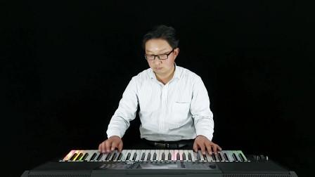 潇洒的走DJ版 电子琴音乐